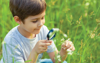 Child sitting in field looking at a white flower through a magnifying glass.